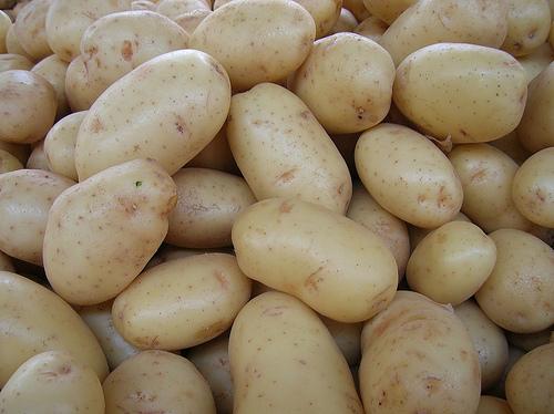Patatas Ecológicas