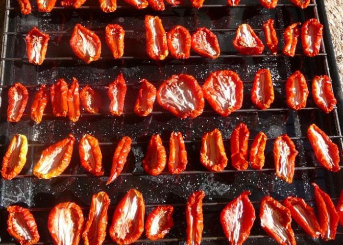 Tomates secos1